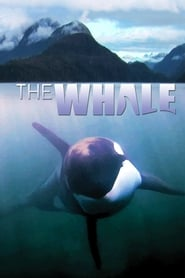 image for movie The Whale (2011)