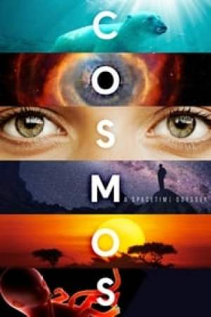 Cosmos streaming vf