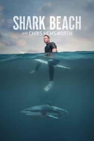 Shark Beach with Chris Hemsworth streaming vf