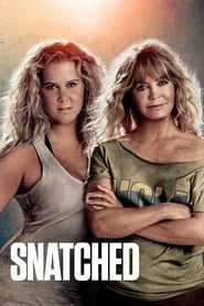 Image for movie Snatched (2017)