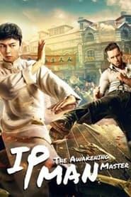 叶问宗师觉醒 (2021)