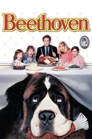 Beethoven streaming vf