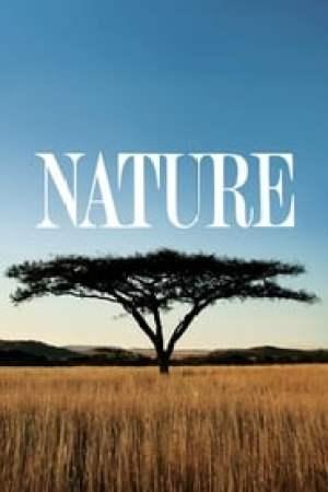 Nature Full online