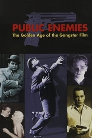 Public Enemies: The Golden Age of the Gangster Film (2008)