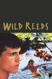 Wild Reeds streaming vf