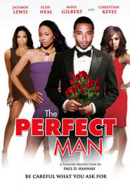Image for movie The Perfect Man (2011)