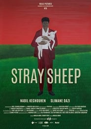 Stray Sheep Poster