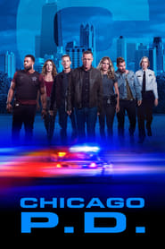Chicago P.D. - Season 2 Episode 10 : Shouldn't Have Been Alone (2)