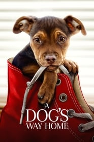 image for movie A Dog's Way Home (2019)