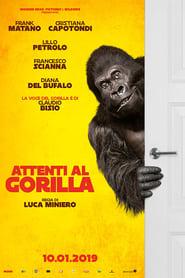 Attenti al gorilla streaming vf