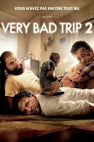 Very Bad Trip 2 streaming vf
