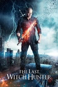 The Last Witch Hunter (2015)