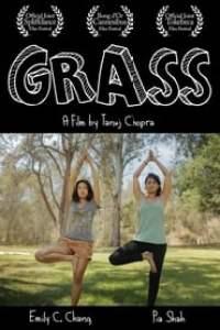 Grass streaming vf