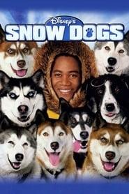 Snow Dogs streaming vf