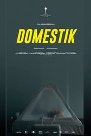 Domestique streaming vf