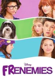 Frenemies (2012)