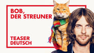Image for movie A Street Cat Named Bob (2016)