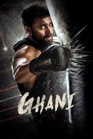 Ghani (2021)