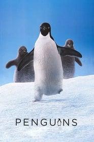 Penguins streaming vf