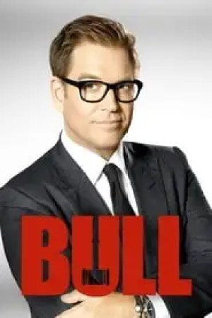 Bull streaming vf