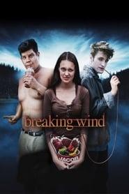 Breaking Wind (2012)