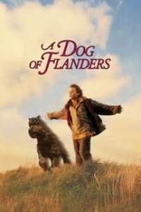 A Dog Of Flanders streaming vf