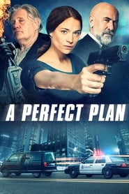 A Perfect Plan streaming vf