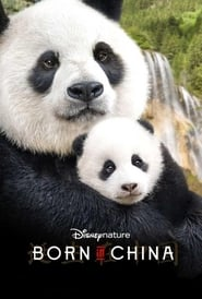 Image for movie Born in China (2017)