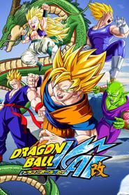 Dragon Ball Z Kai (2009)