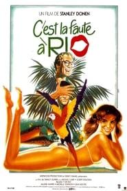 C'est la faute à Rio Poster