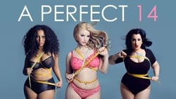 Streaming Movie A Perfect 14 (2018) Online
