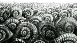 The Snails (1966)