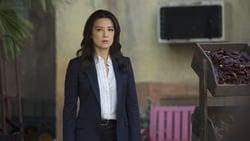 Watch Melinda - TV Series Marvel's Agents of S.H.I.E.L.D. (2013) Season 2 Episode 17