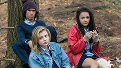 Watch Movie Online The Miseducation of Cameron Post (2018)