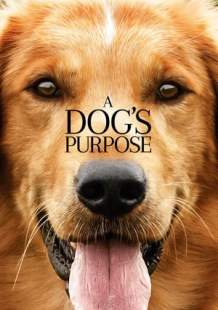 Streaming Movie A Dog's Purpose (2017) Online