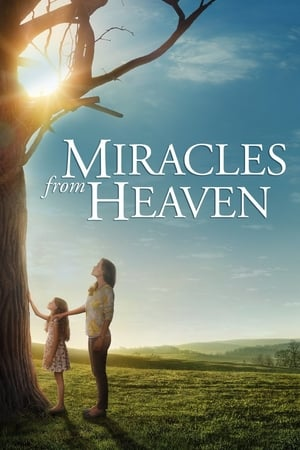 Poster Movie Miracles from Heaven 2016