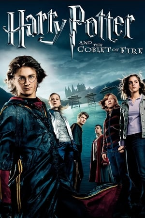 Watch and Download Movie Harry Potter and the Goblet of Fire (2005)-触手游戏