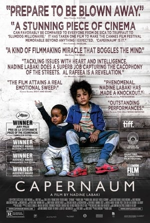 Watch Full Movie Capernaum (2018)