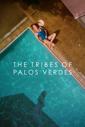Poster Movie The Tribes of Palos Verdes 2017