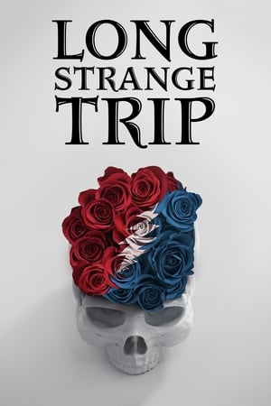 Poster Movie Long Strange Trip 2017