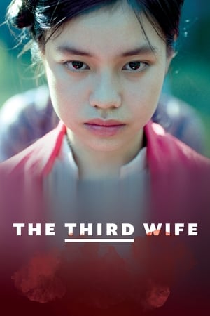 Poster Movie The Third Wife 2019