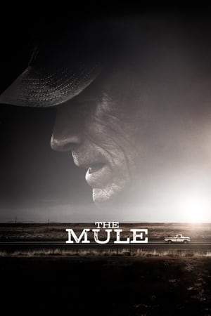 Streaming Movie The Mule (2018)