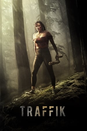 Poster Movie Traffik 2018