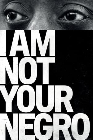 Poster Movie I Am Not Your Negro 2017
