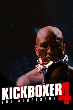 Image Kickboxer 4: The Aggressor