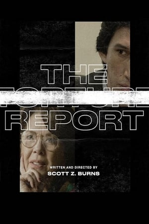 poster The Report