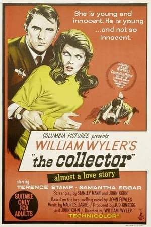 poster The Collector