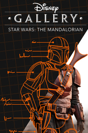 Disney Gallery: The Mandalorian