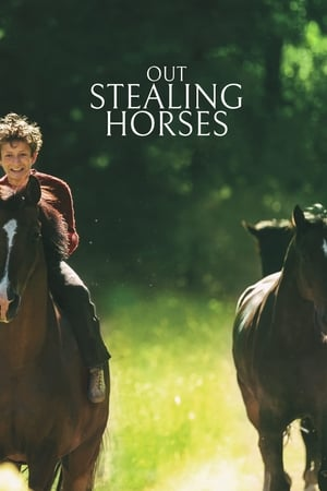 Image Out Stealing Horses