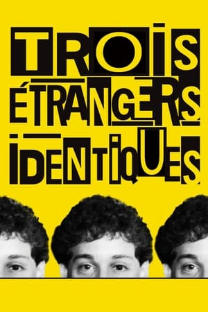 poster Three Identical Strangers